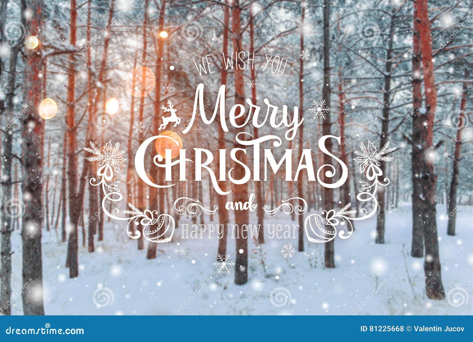 Paysage givré d hiver à l arrière-plan neigeux de Noël de forêt avec des sapins et au fond brouillé de l hiver avec le Joyeux Noë