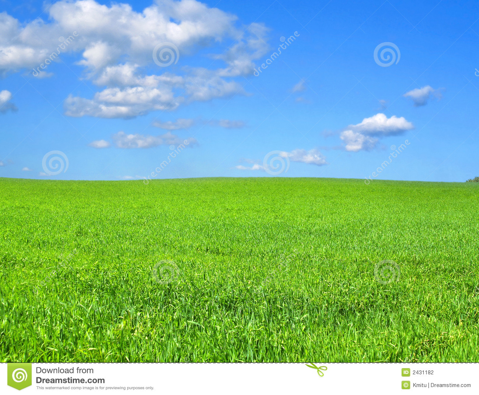 Paysage idyllique photo stock image du vert outdoors for Paysage vert