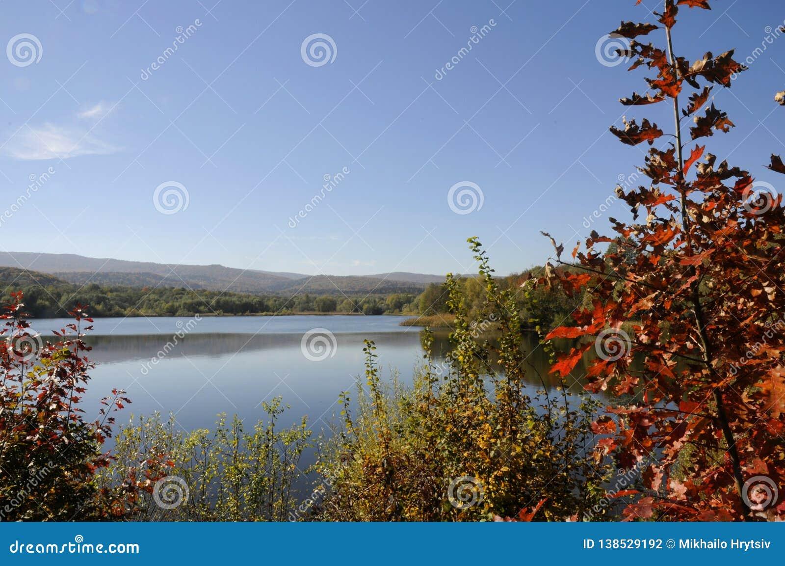 Paysage, lac coloré magnifique