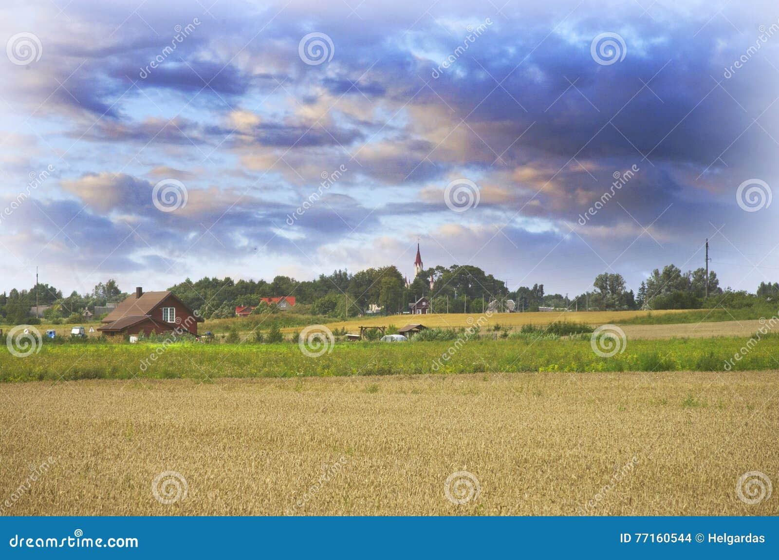 Paysage lithuanien de campagne avec un village de Musninkai à un arrière-plan
