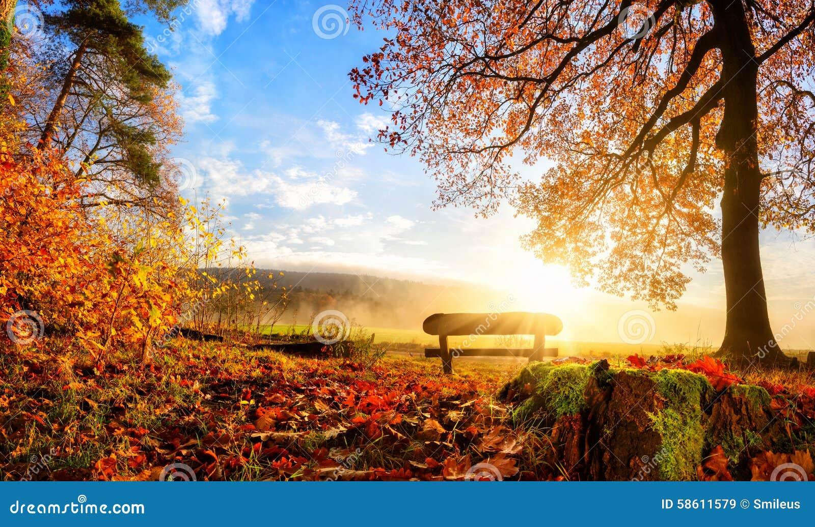 paysage magnifique d 39 automne image stock image du. Black Bedroom Furniture Sets. Home Design Ideas