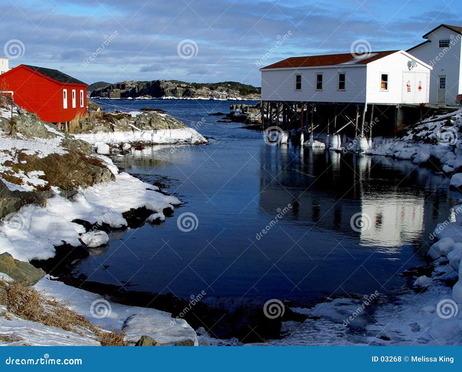Paysage marin de l hiver