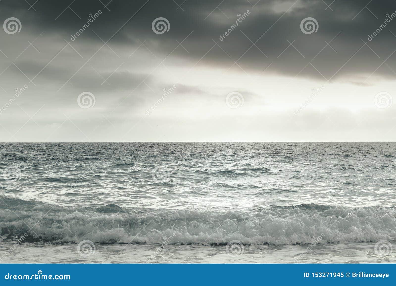 Paysage marin dramatique avec des vagues