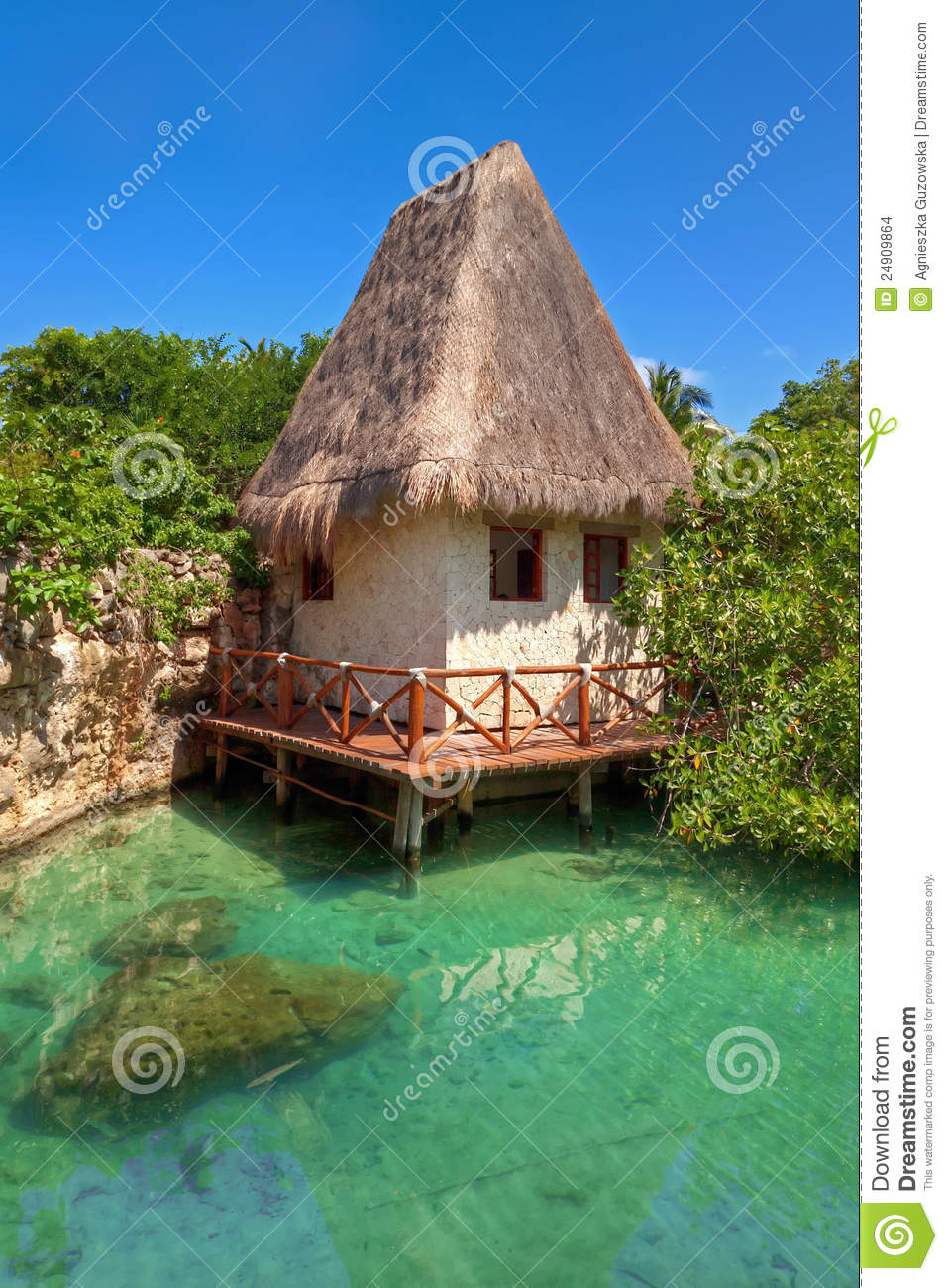 paysage mexicain idyllique de jungle images stock image 24909864. Black Bedroom Furniture Sets. Home Design Ideas