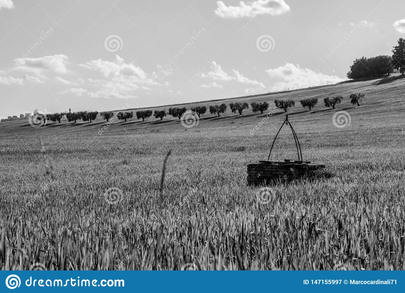 Paysage noir et blanc de campagne dans la r?gion de la Marche de l Italie
