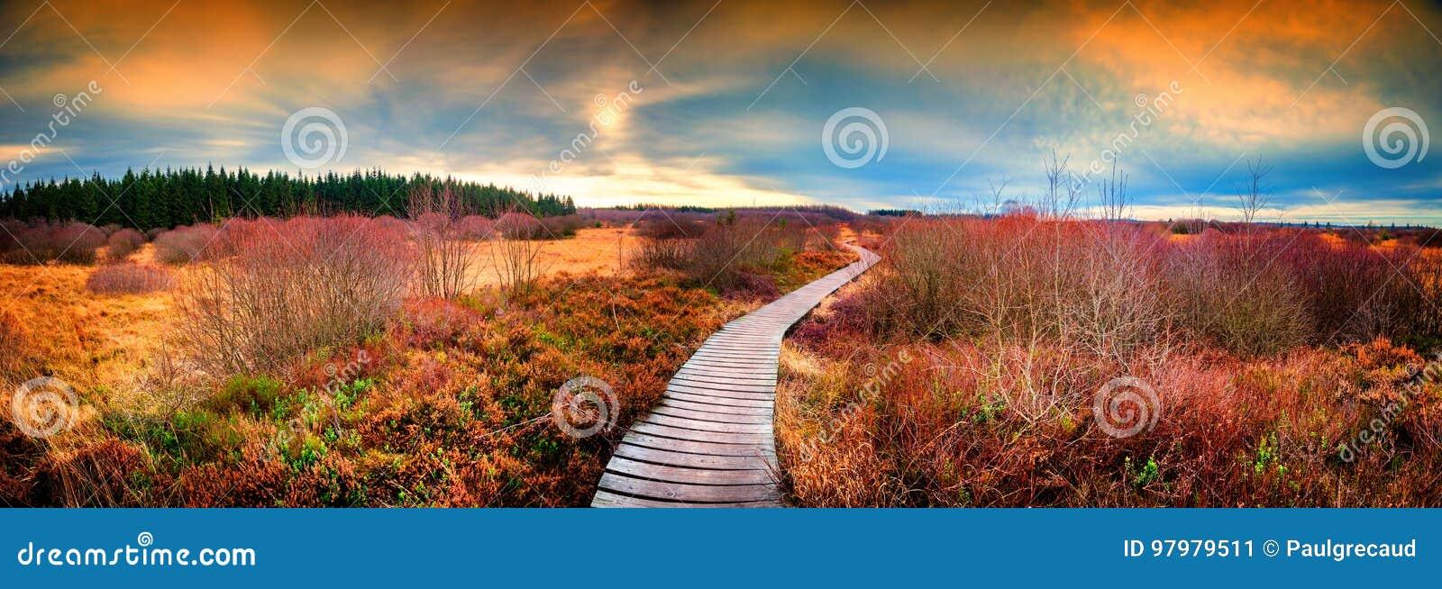 Paysage panoramique d automne avec le chemin en bois Backgro de nature de chute