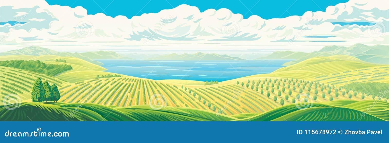 Paysage panoramique rural
