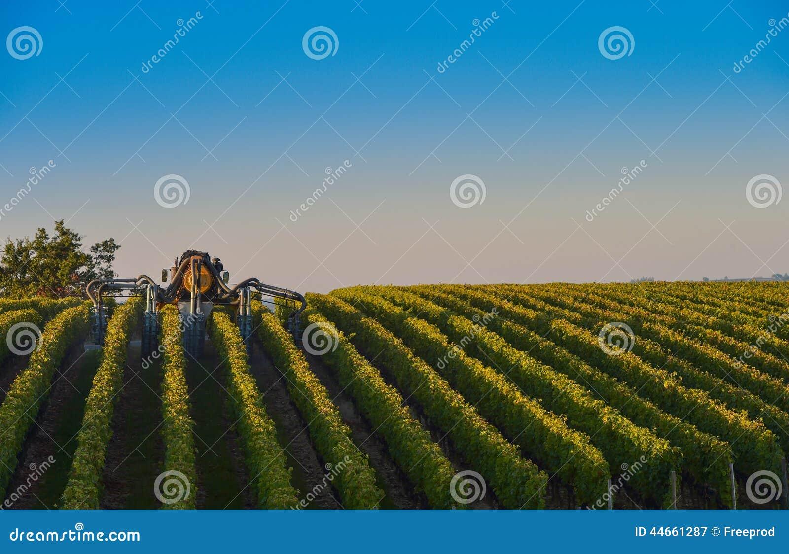 Paysage pulv risation de vignoble des sud de vigne for Agence paysage de l ouest
