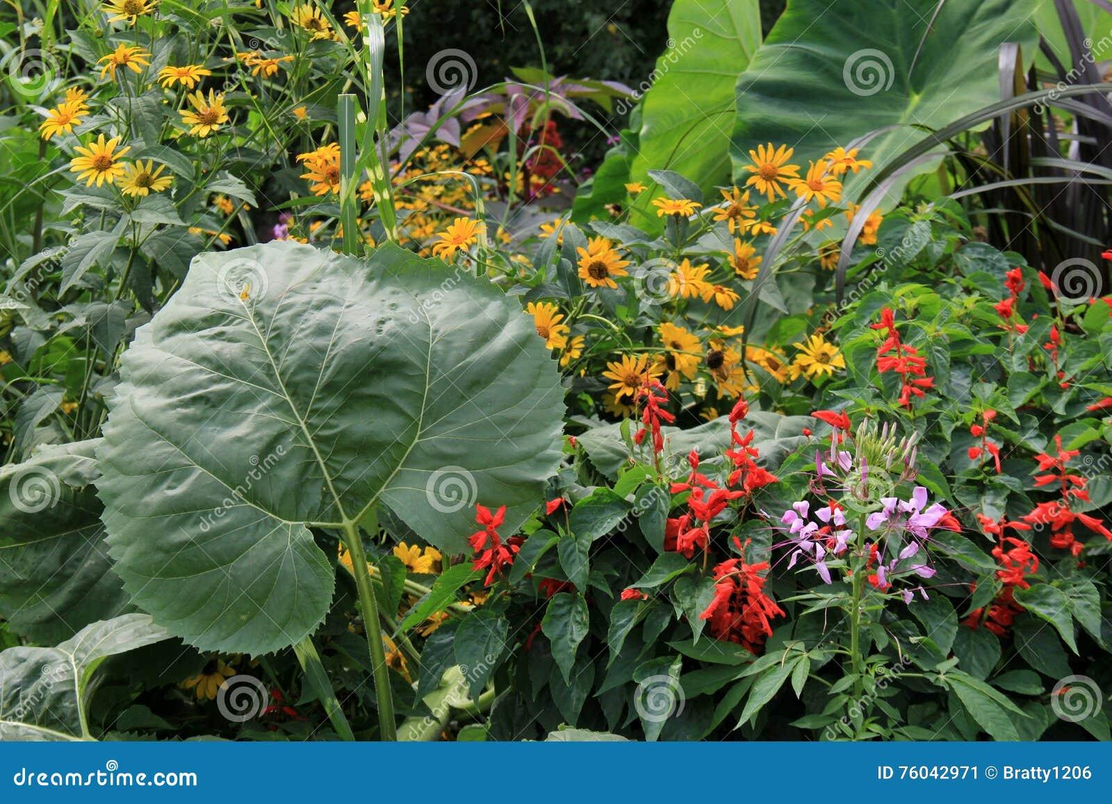 Paysage Renversant Des Fleurs Et Des Plantes Magnifiques Image Stock