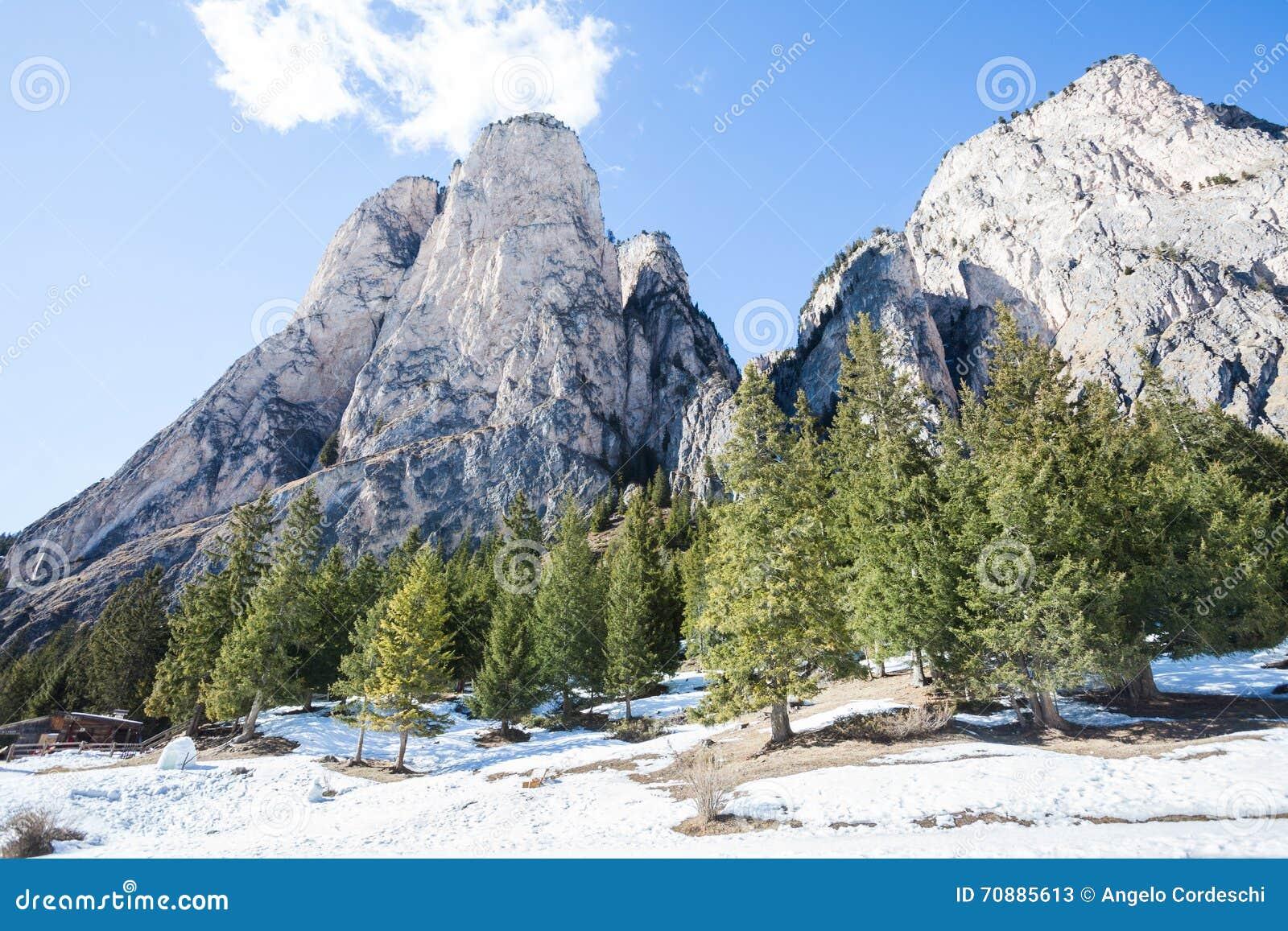Paysage Rocheux De Montagne Avec La Forêt Et La Neige En Bois De Sapin Ortisei, Italie Image