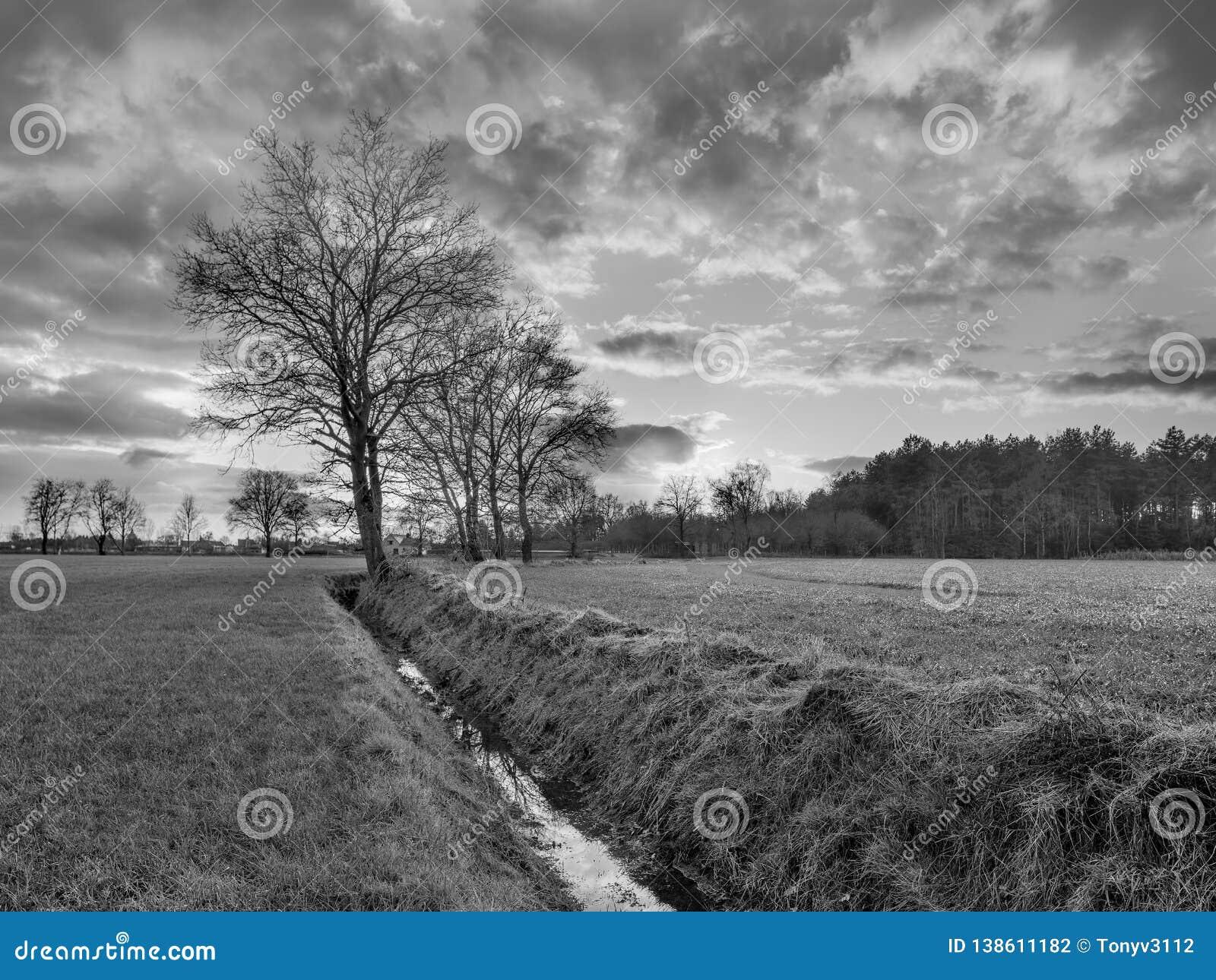 Paysage rural, champ avec des arbres près d un fossé et coucher du soleil coloré avec les nuages dramatiques, Weelde, Belgique