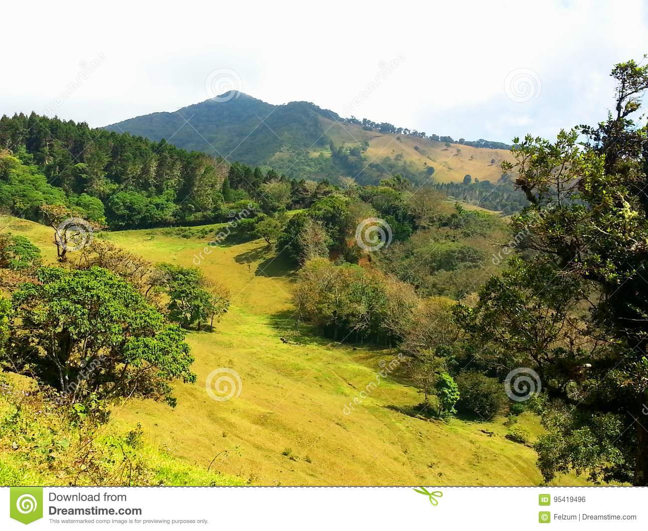 paysage rural costa rica photo stock image du rural 95419496. Black Bedroom Furniture Sets. Home Design Ideas