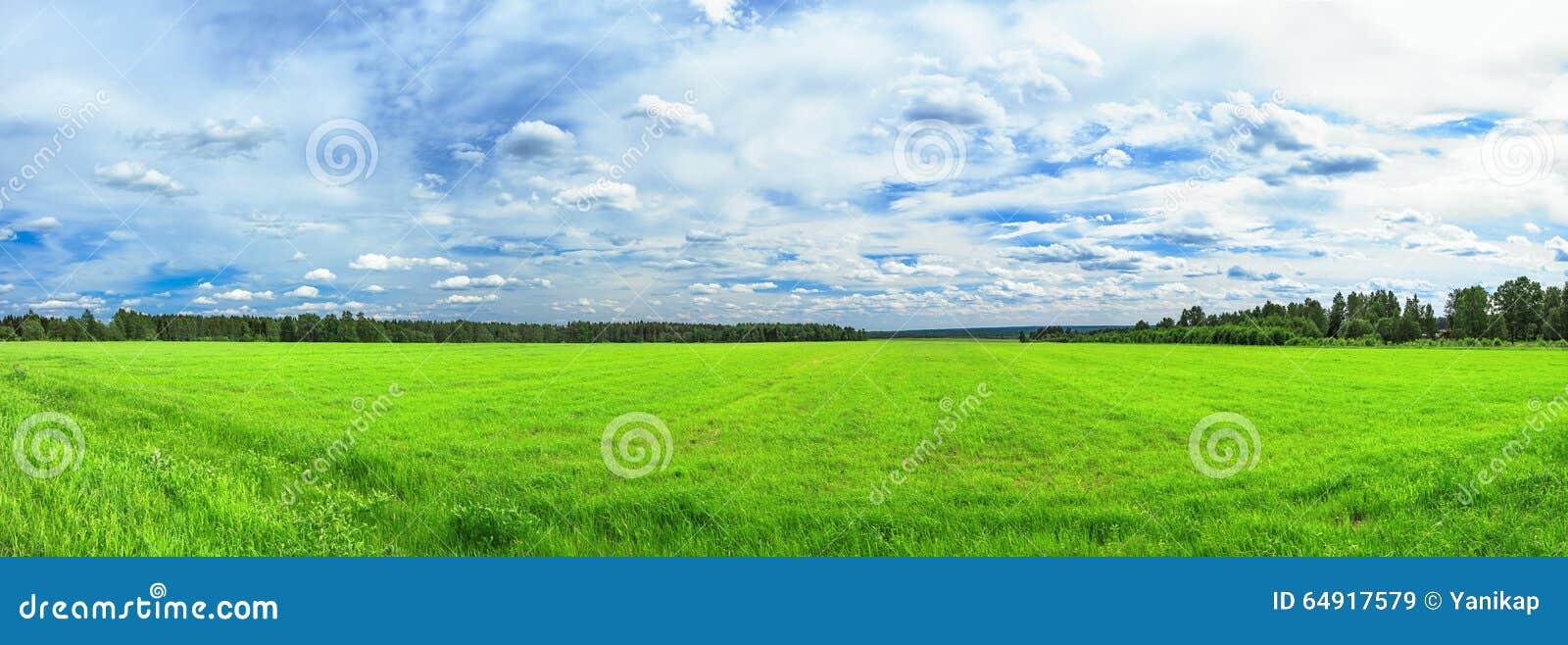 Paysage rural d été un panorama avec un champ et le ciel bleu