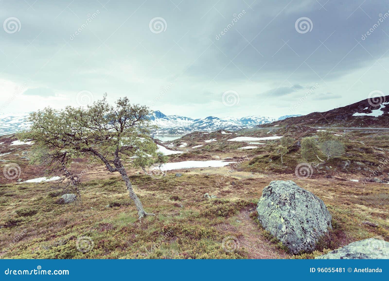 Paysage scénique de montagne de la Norvège
