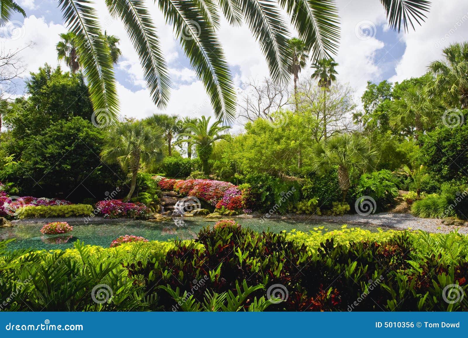 Paysage tropical de jardin image libre de droits image 5010356 for Paysage de jardin