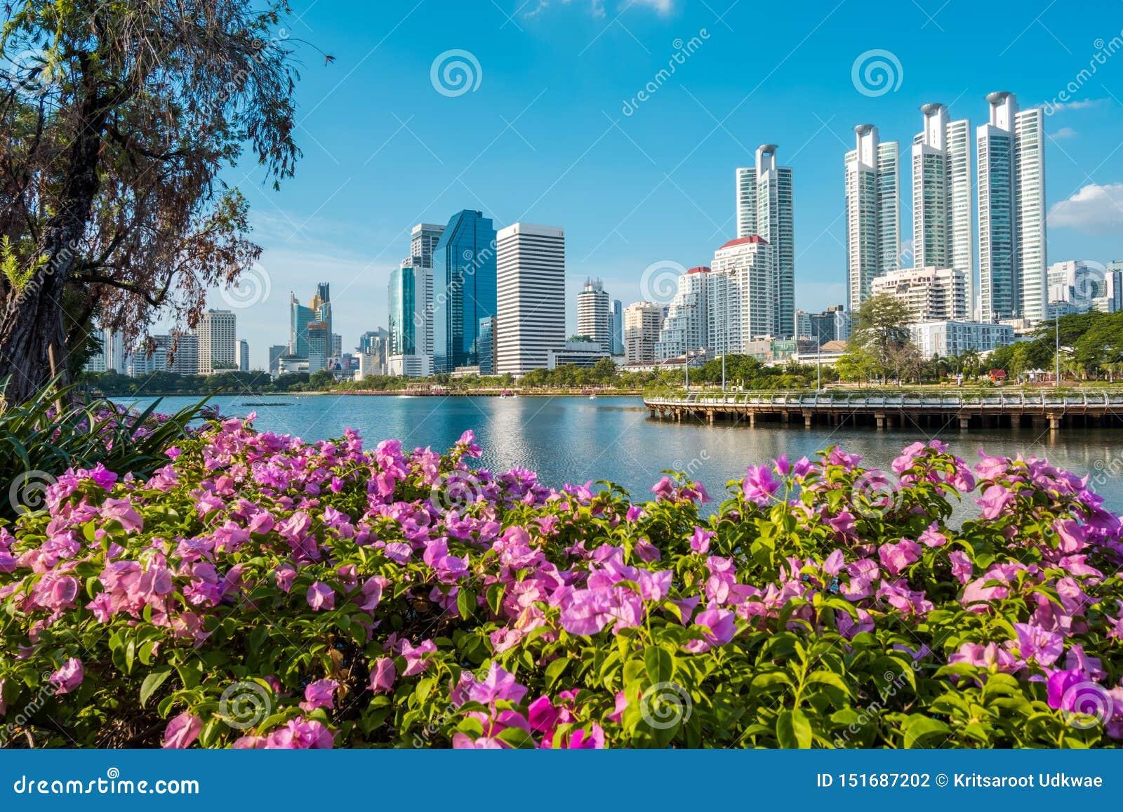 Paysage urbain, paysage ou bâtiments ayant beaucoup d étages vus du parc de Benjakiti à Bangkok, Thaïlande