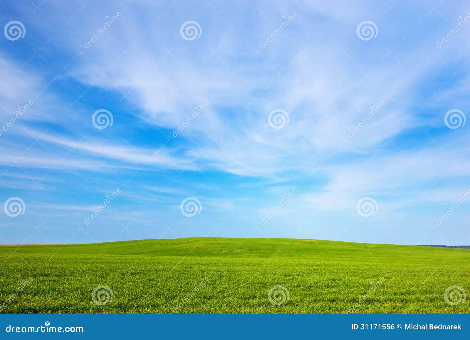 Paysage vert de champ ciel bleu ensoleill image libre de for Paysage vert