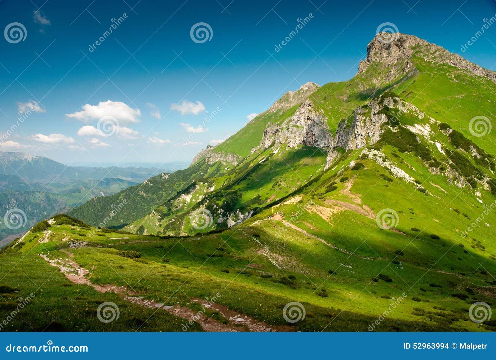Paysage vert de cr te de montagne photo stock image for Paysage vert