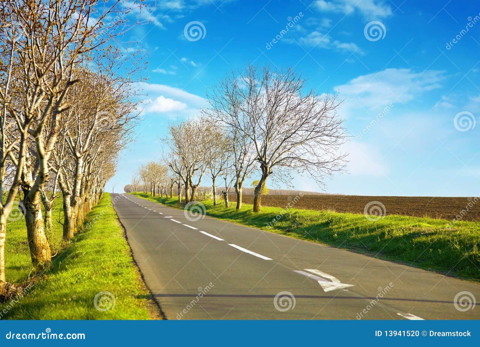 Paysage vide de route avec un horizont bleu