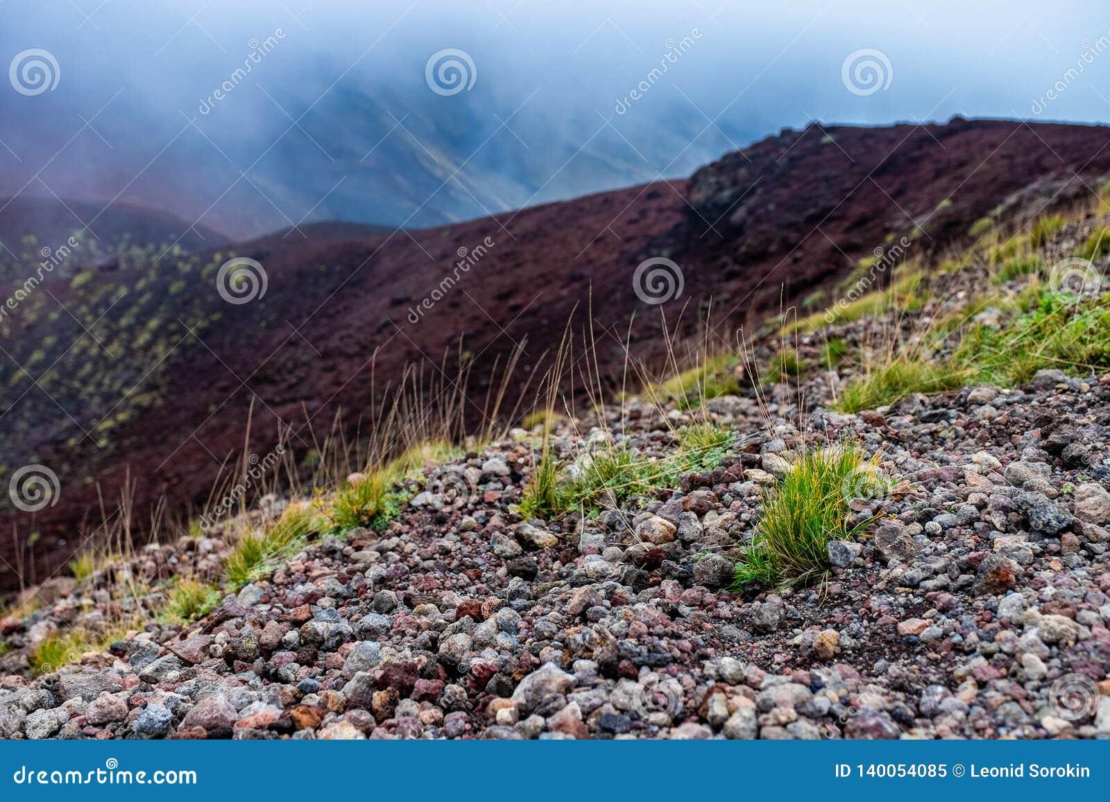 Paysage volcanique pittoresque du mont Etna, parc national de l Etna, Sicile, Italie