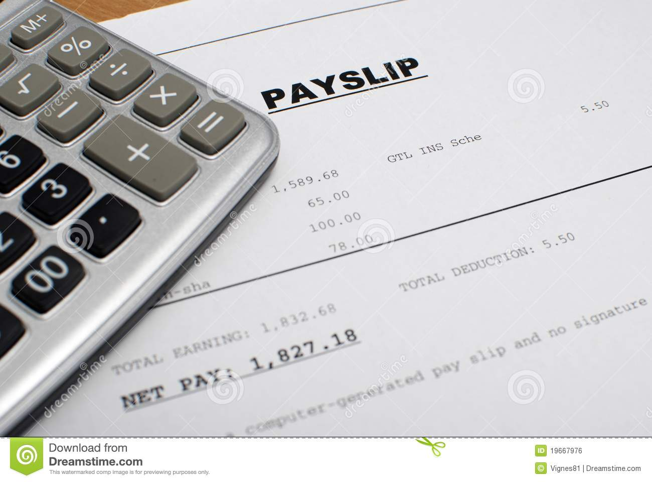 Download Payslips compliance officer resume samples – Pay Slip Download
