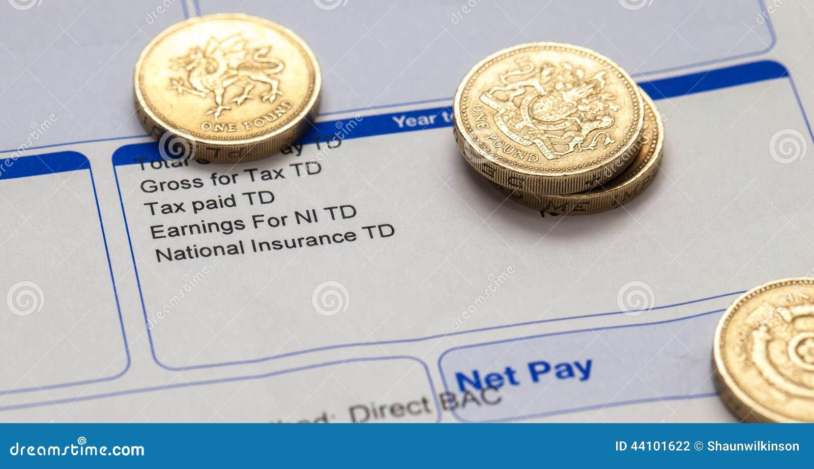 graphical salary slip