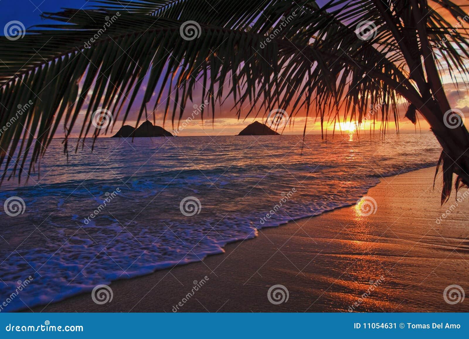Pazifischer Sonnenaufgang am Lanikai Strand in Hawaii
