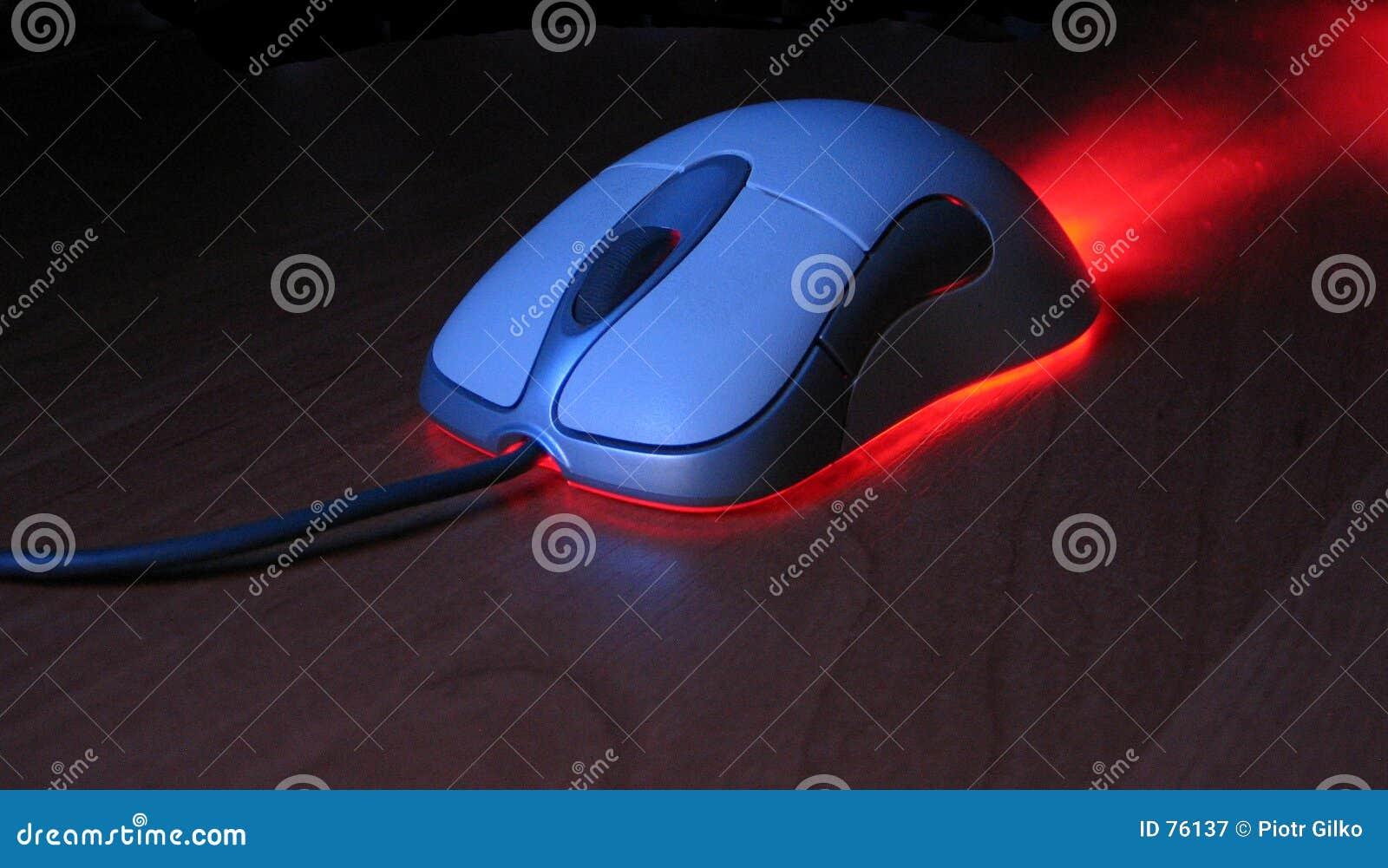 PC mouse.