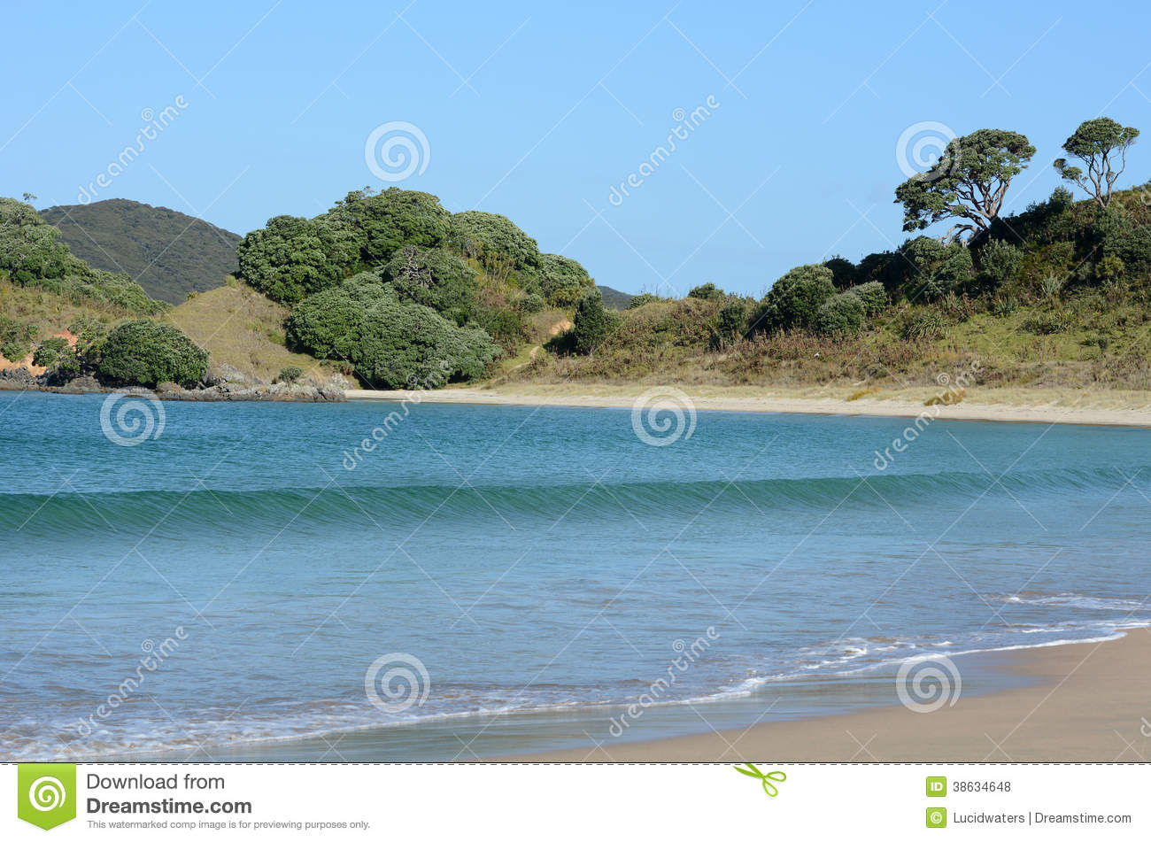 Karikari Peninsula New Zealand  city pictures gallery : ... of Matai Bay coastline in Karikari peninsula of Northland New Zealand