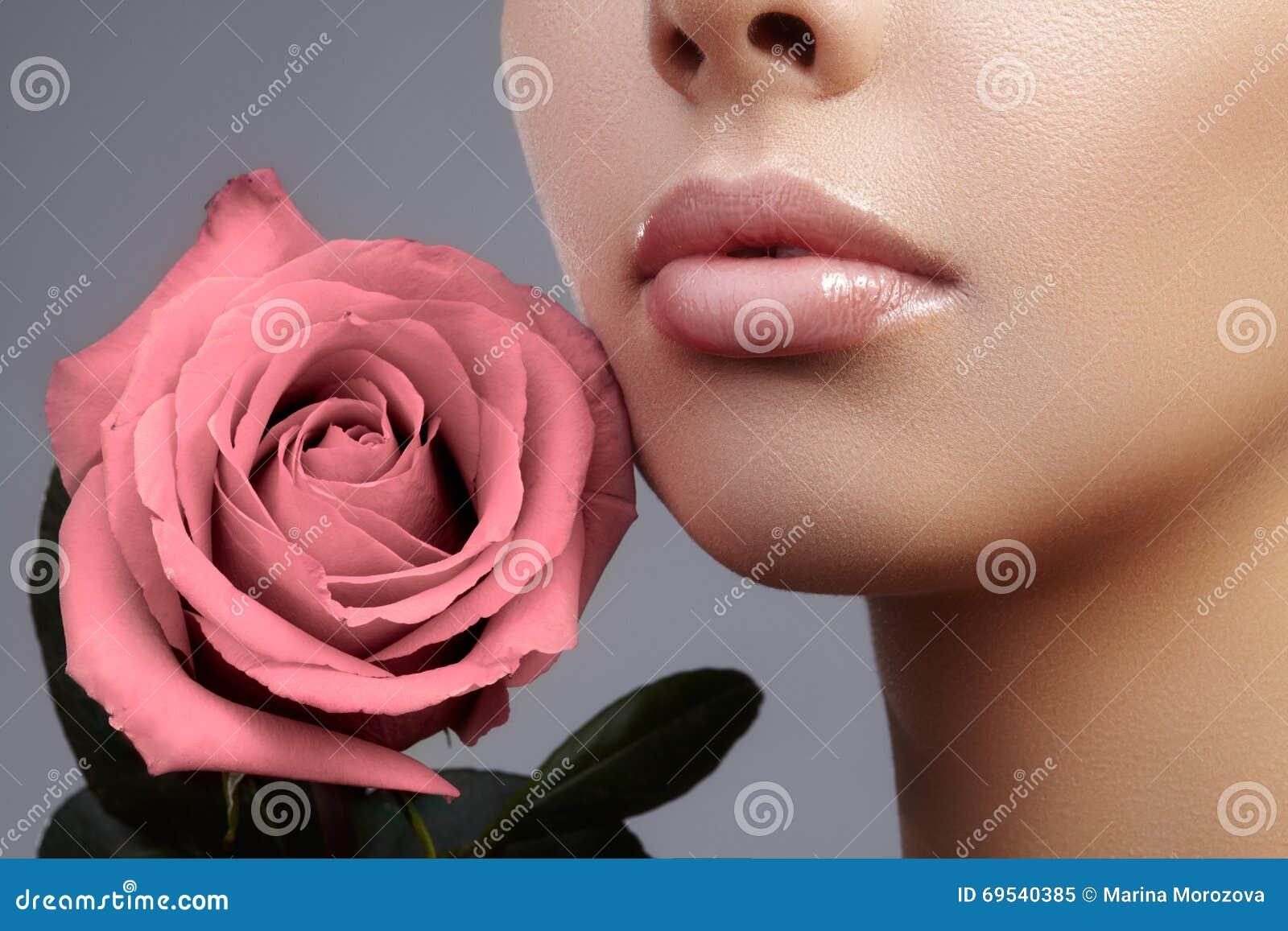 Peça da cara Bordos fêmeas bonitos com composição natural, pele limpa Tiro macro do bordo fêmea, pele limpa Beijo fresco