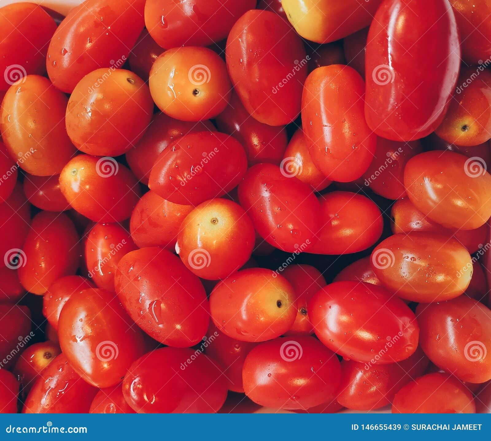 Pełna rama świezi pomidory