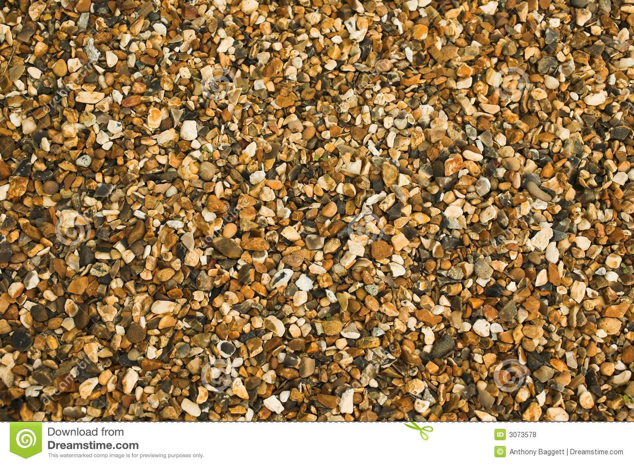 Pea Shingle Gravel Stock Photo Image Of Horticulture