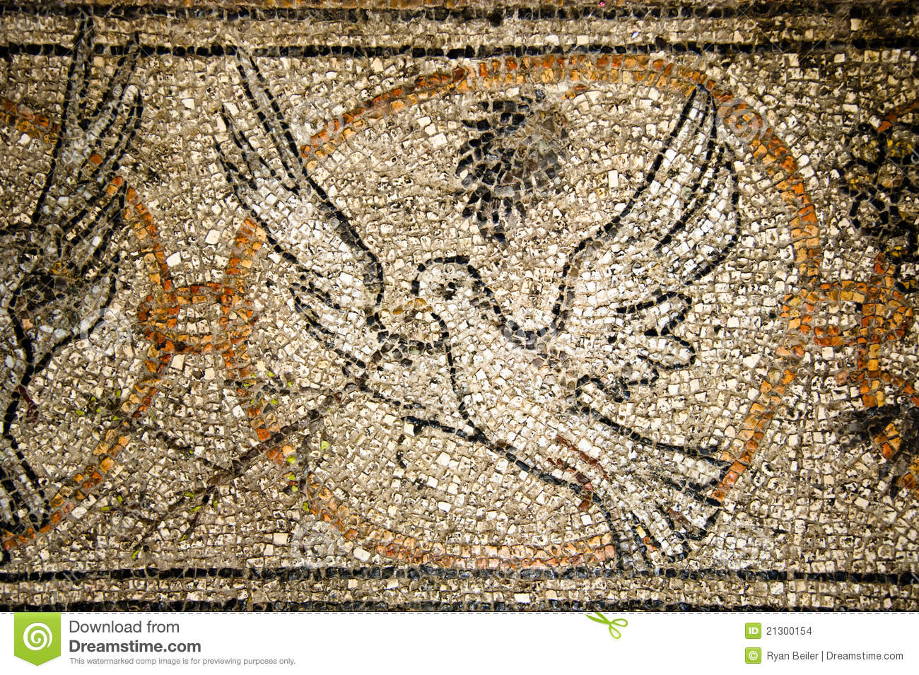 Peace Dove Mosaic Stock Images Image 21300154
