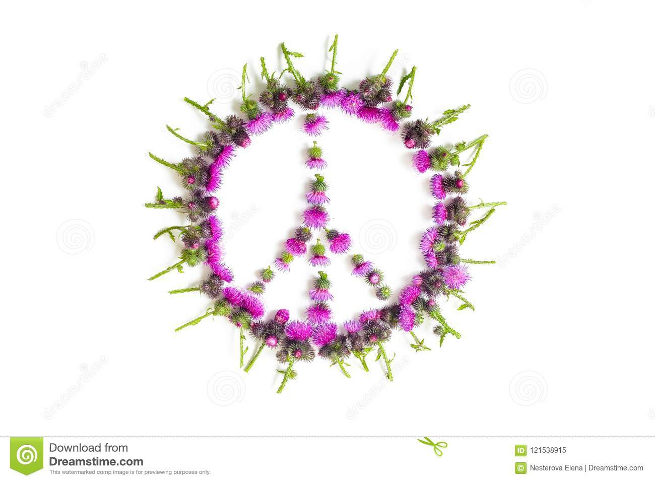 Peace Sign Pacific A Symbol Of Peace Lined With Delicate Pink