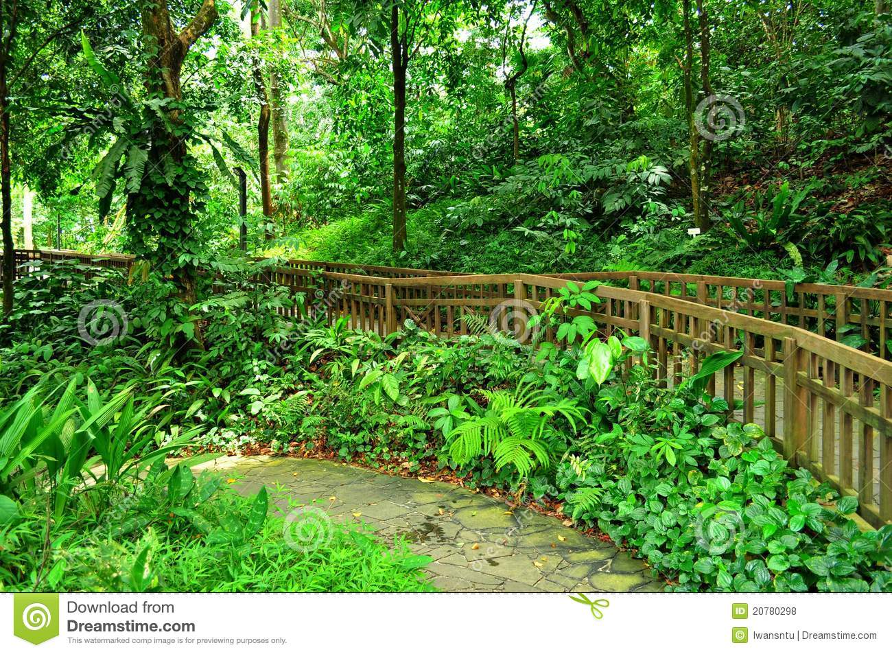 Peaceful Garden With Forested Background Royalty Free
