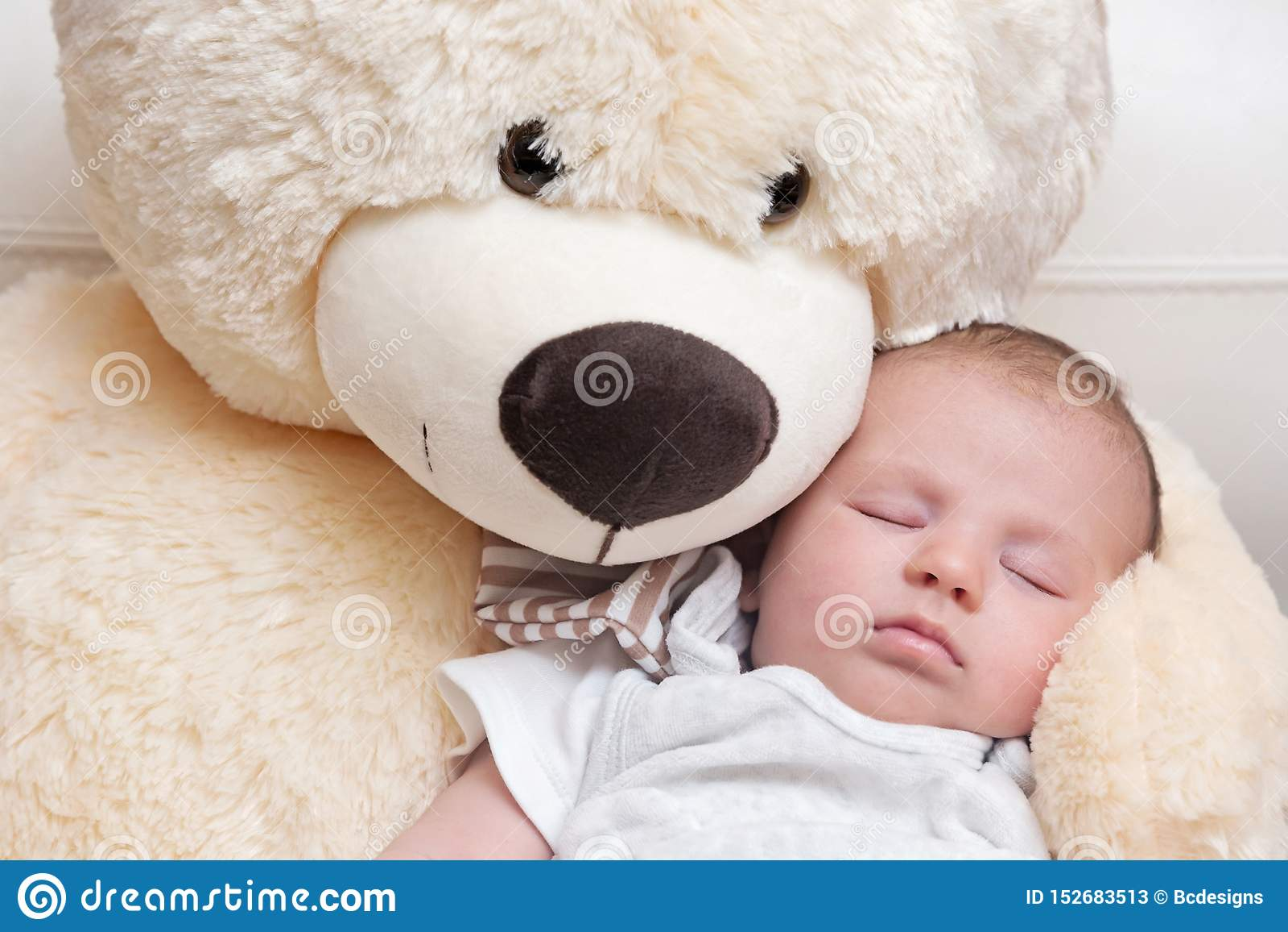 Hay Hay Chicken Stuffed Animal, Baby Boy Sleeping With Big Teddy Bear Stock Image Image Of Home Child 152683513