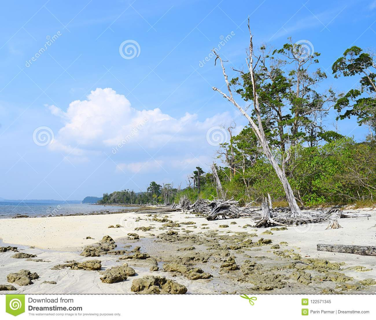 Havelock Island: Peaceful Rocky Elephant Beach With Trees And Blue Sky