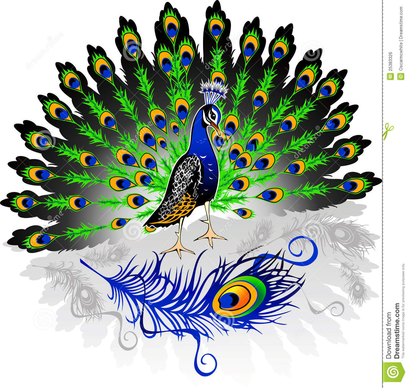 Peacock Royalty Free Stock Image - Image: 25383326