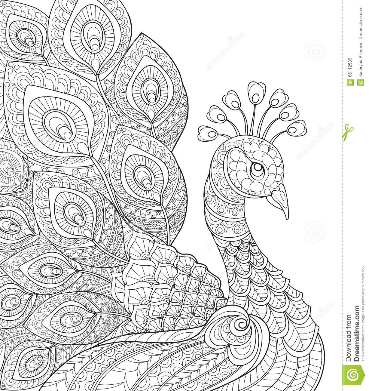 Adult coloring pages black and white ~ Peacock. Adult Antistress Coloring Page. Black And White ...