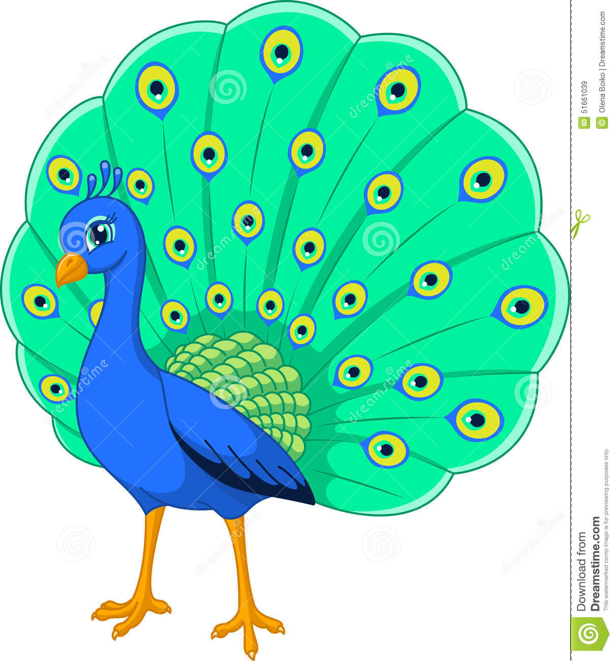 Peacock Stock Vector - Image: 51661039