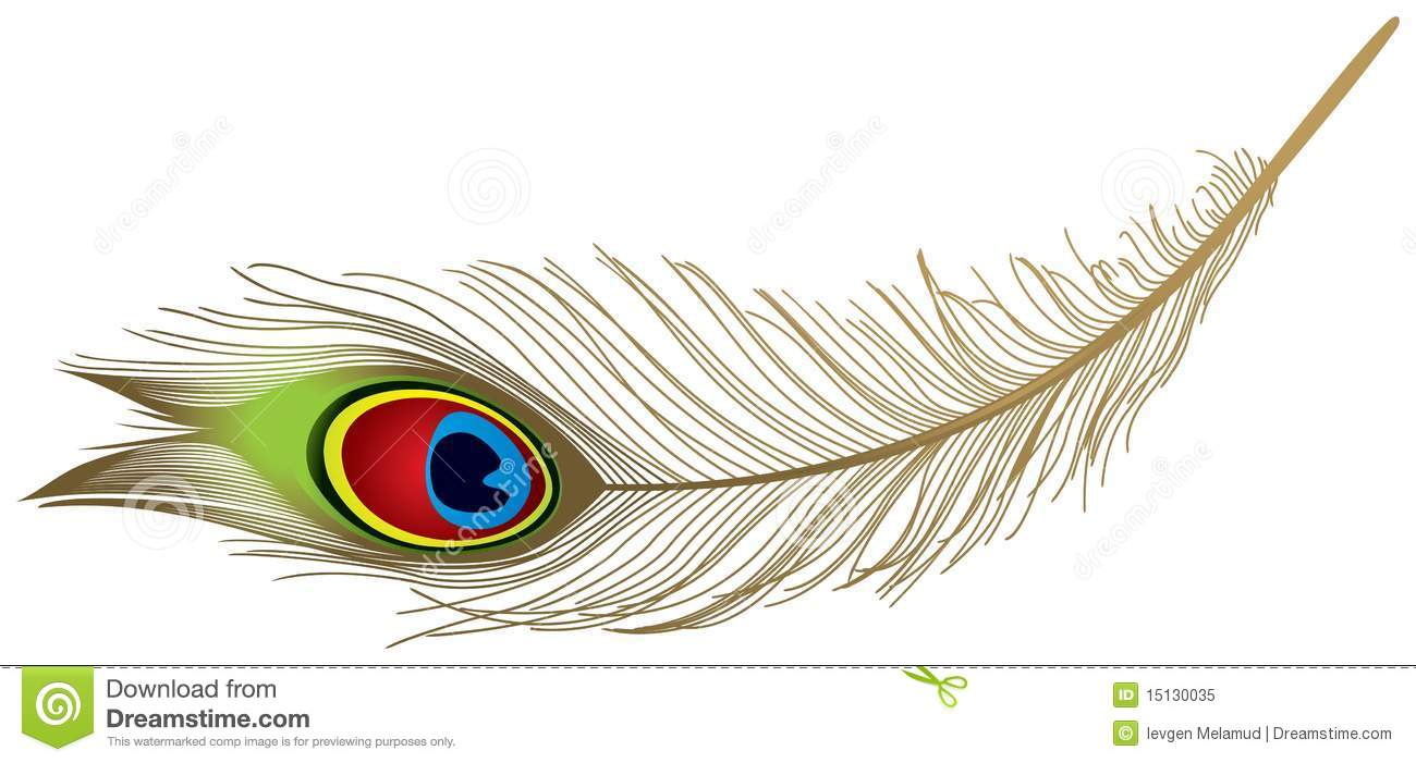 Peacock Stock Illustrations – 7,864 Peacock Stock Illustrations ...