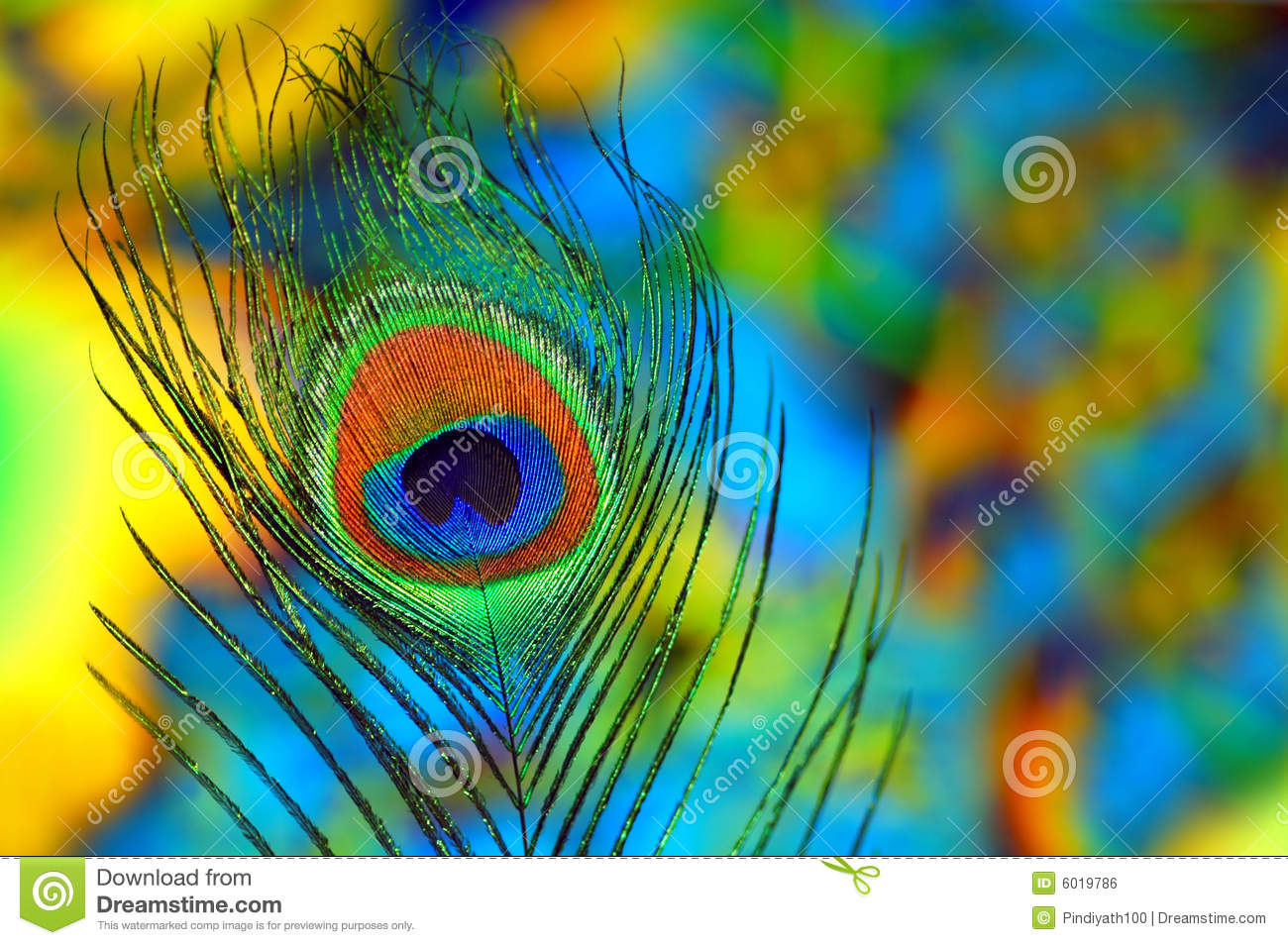 All Over Print Images Stock Photos amp Vectors  Shutterstock