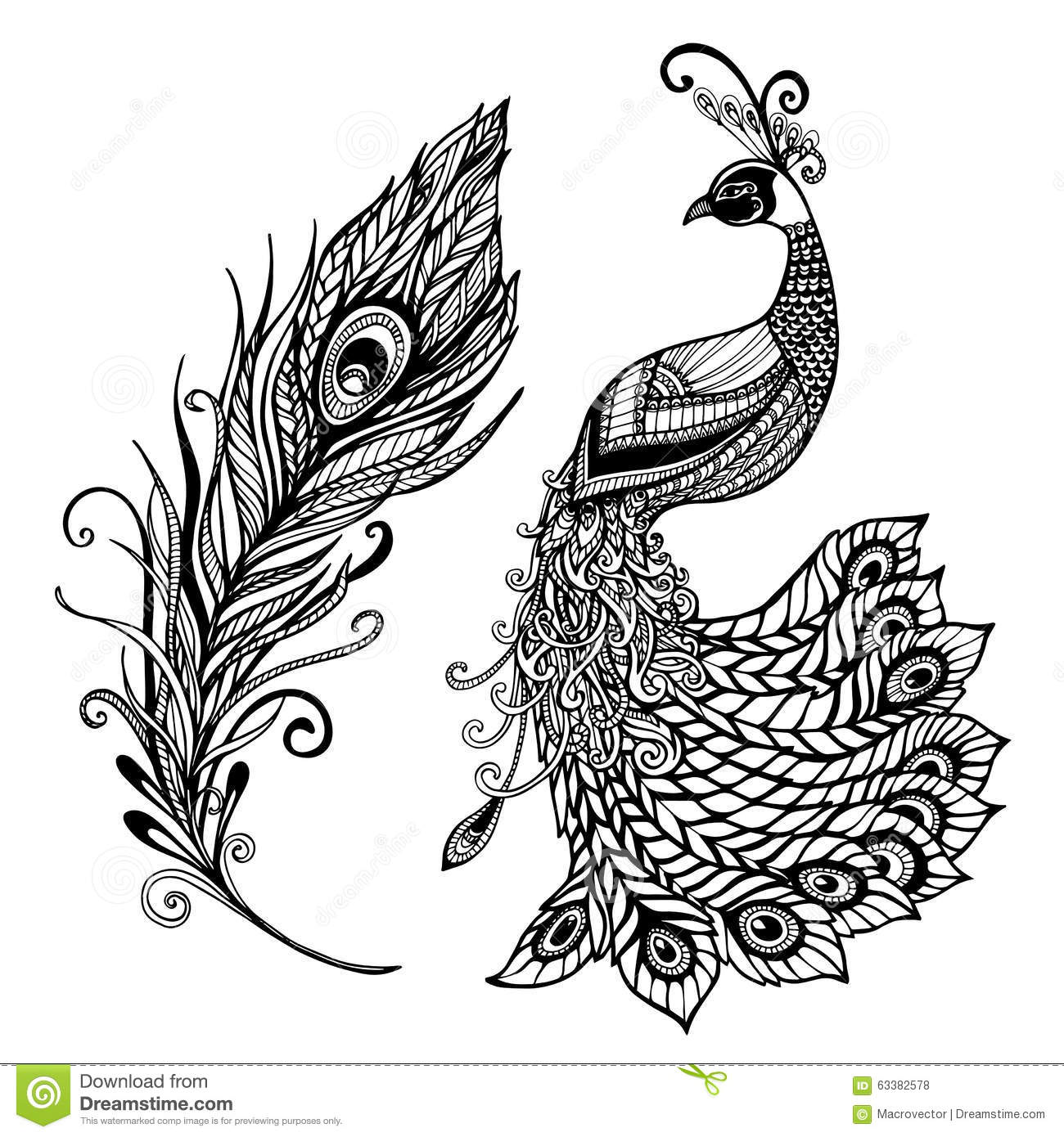 Superieur Peacock Feather Design Black Doodle Print