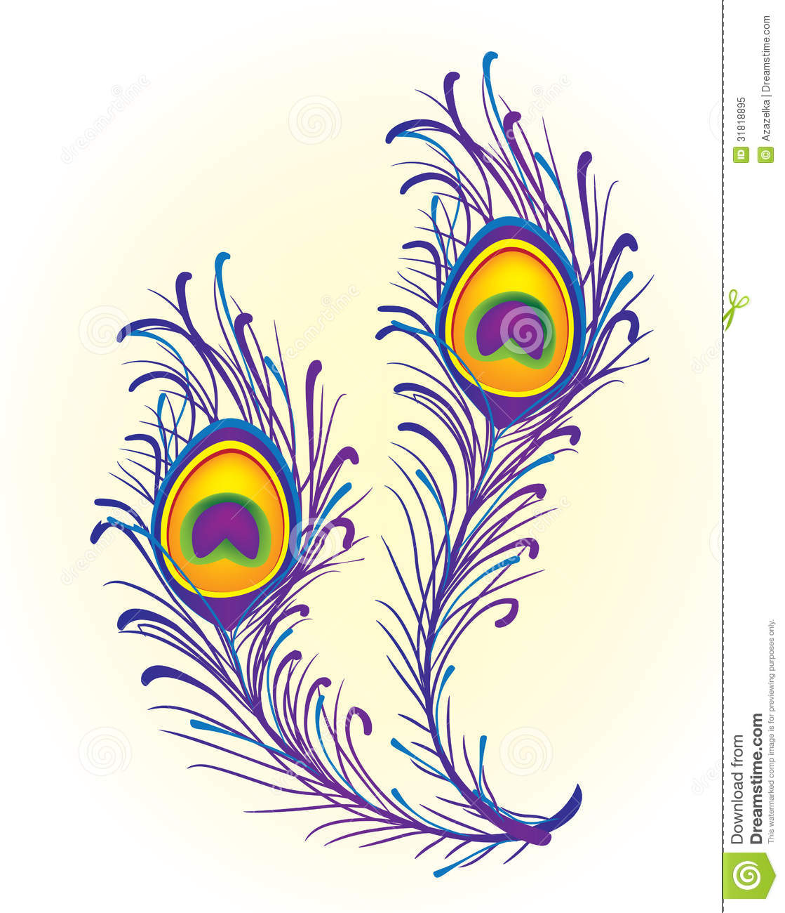 Peacock Feather Royalty Free Stock Photo - Image: 31818895 Peacock Pattern Outline
