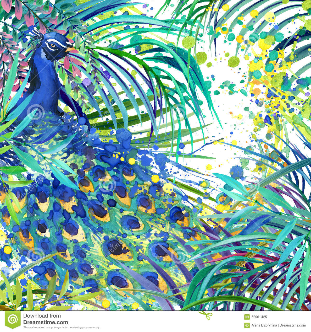 Peacock Illustration.Tropical Exotic Forest, Green Leaves ...