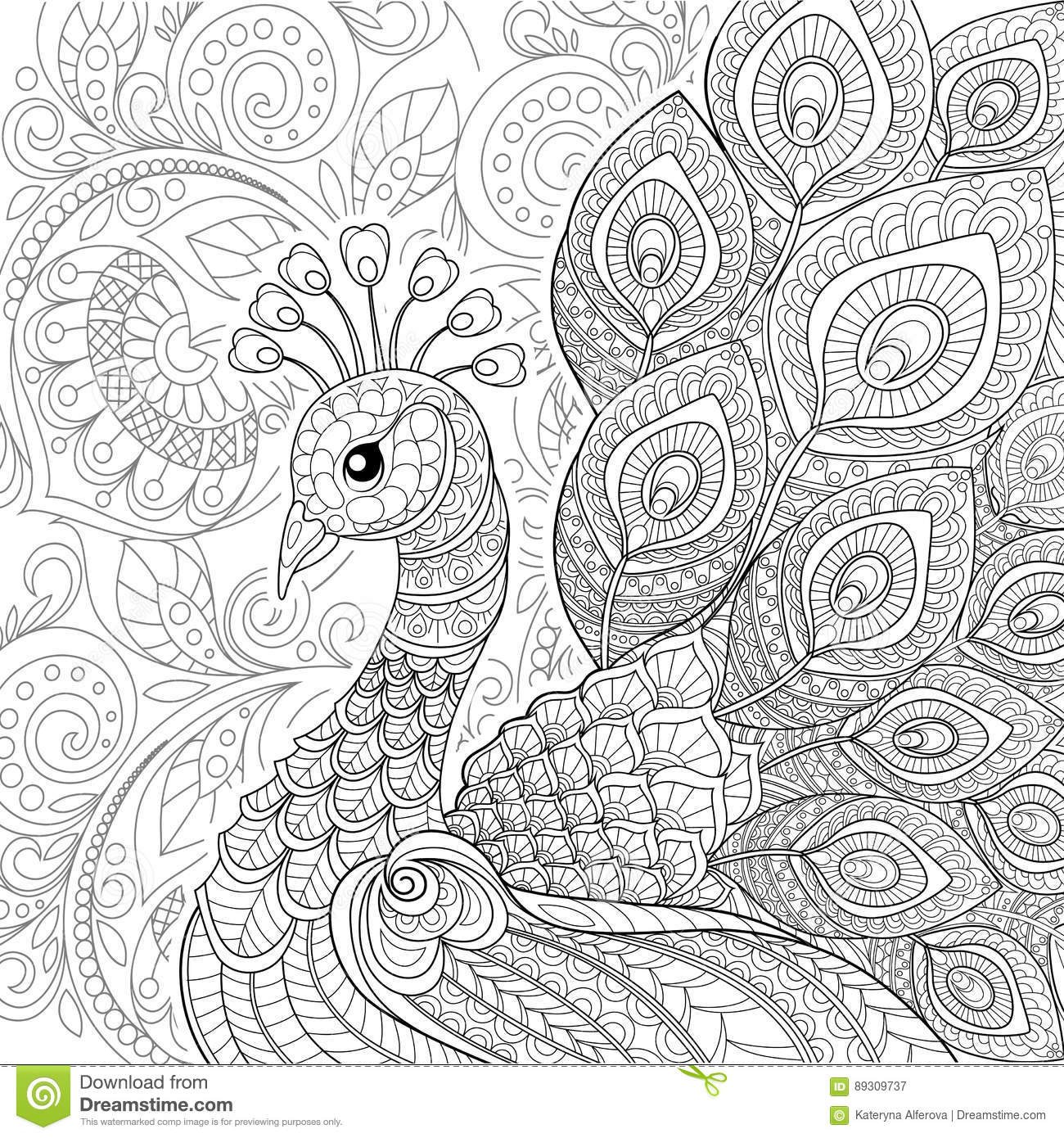 Peacock In Zentangle Style Adult