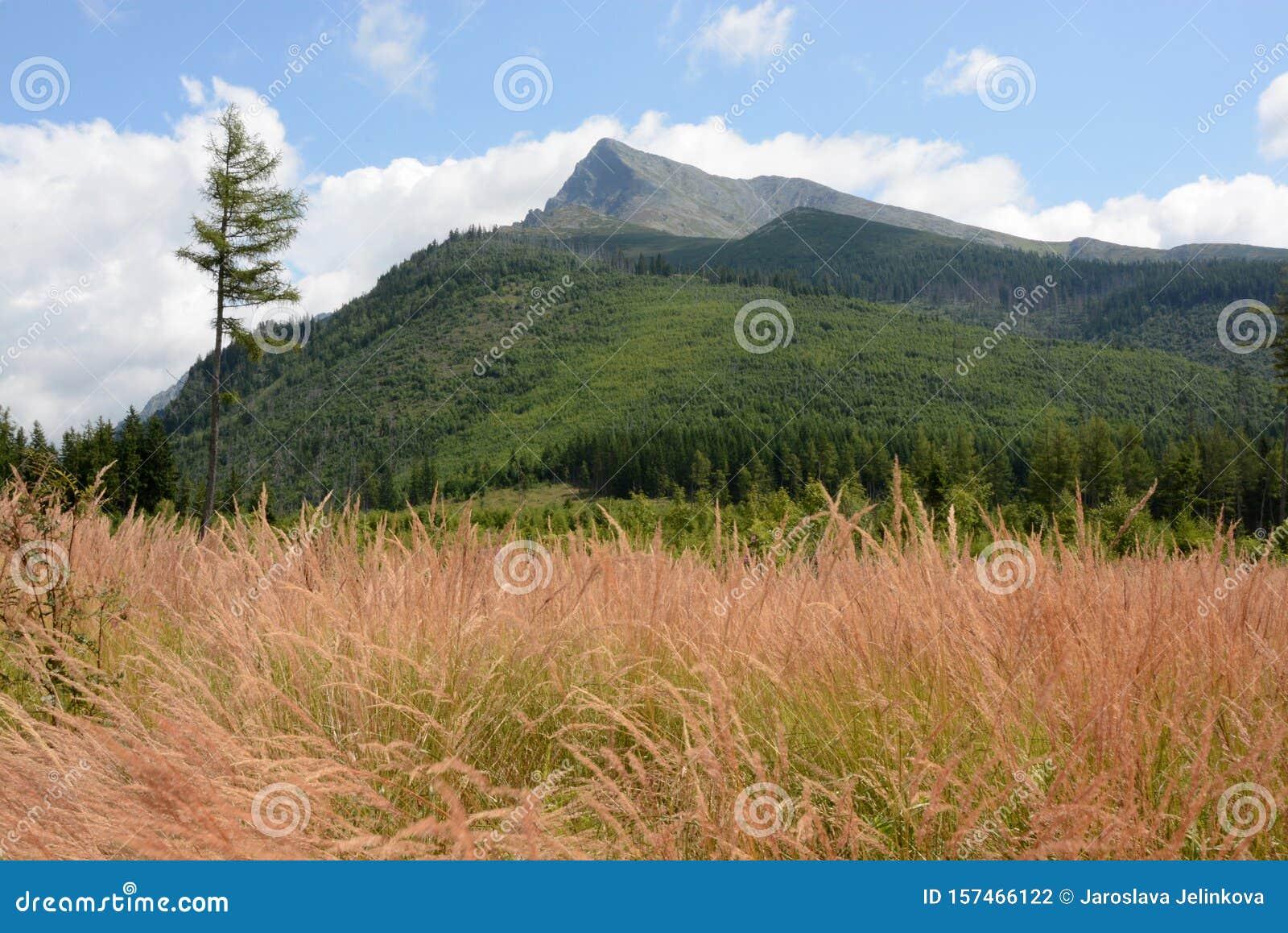 Slovensko, High Tatras, Krivan peak