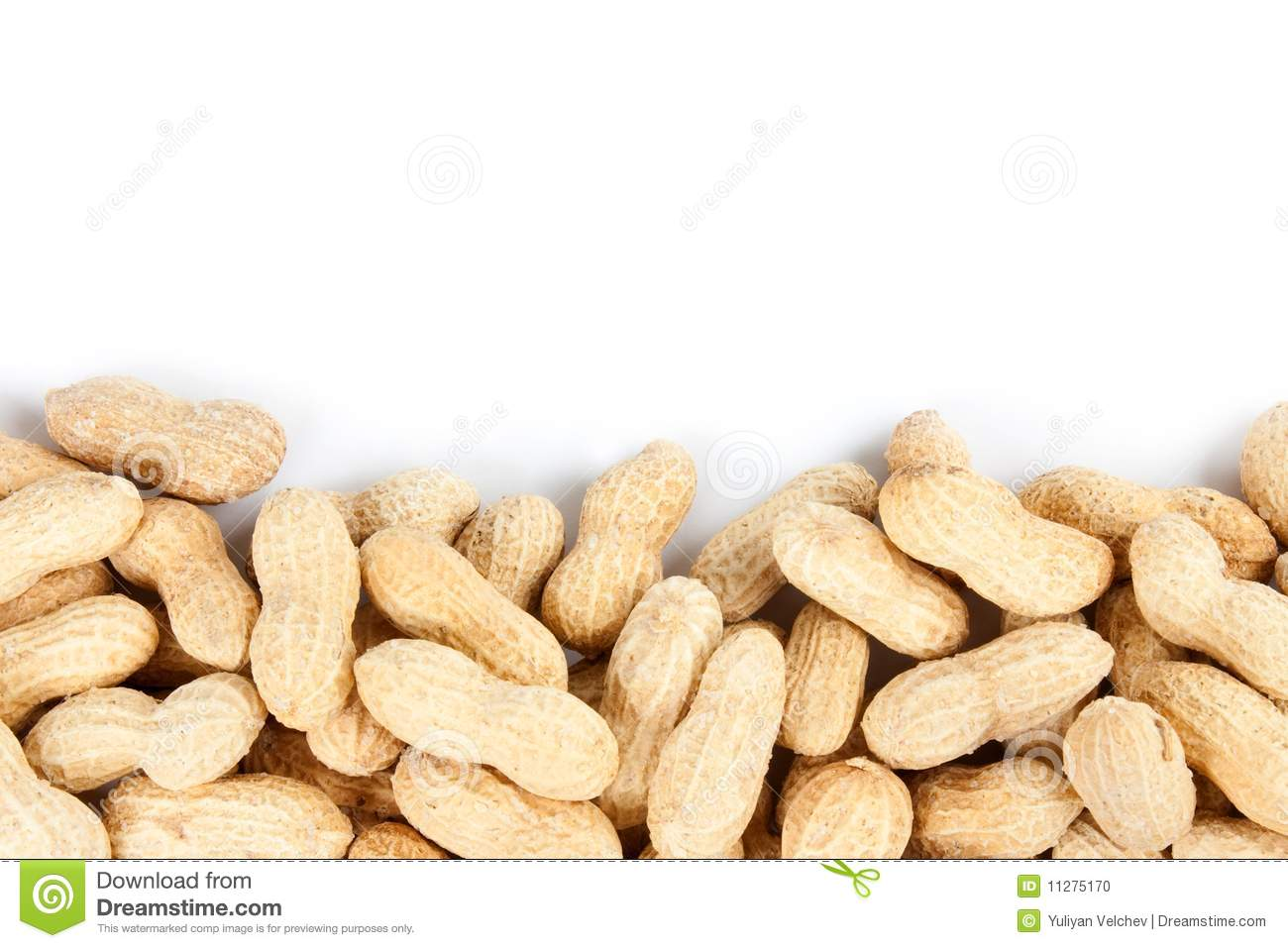 Peanuts border isolated on a white background.