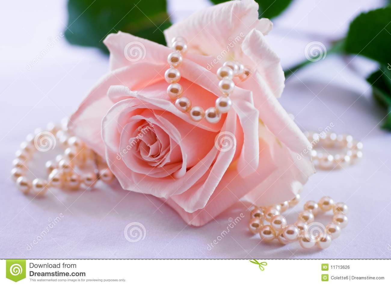 Pearl necklace and soft pink rose