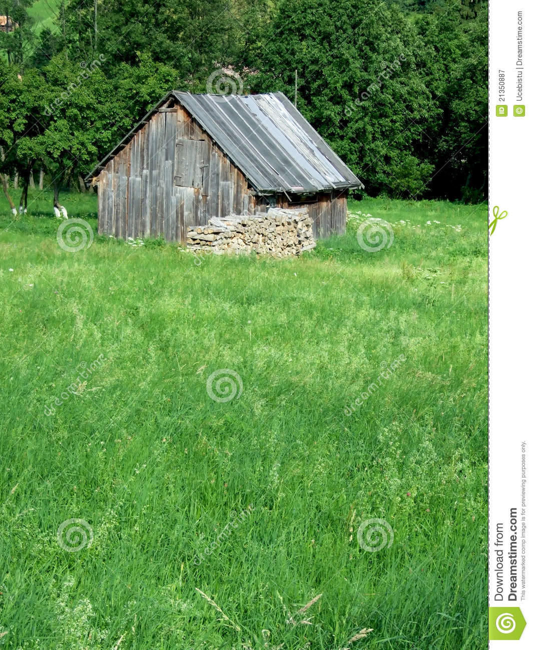 Peasant house royalty free stock photography image 21350887 - Romanian peasant houses ...